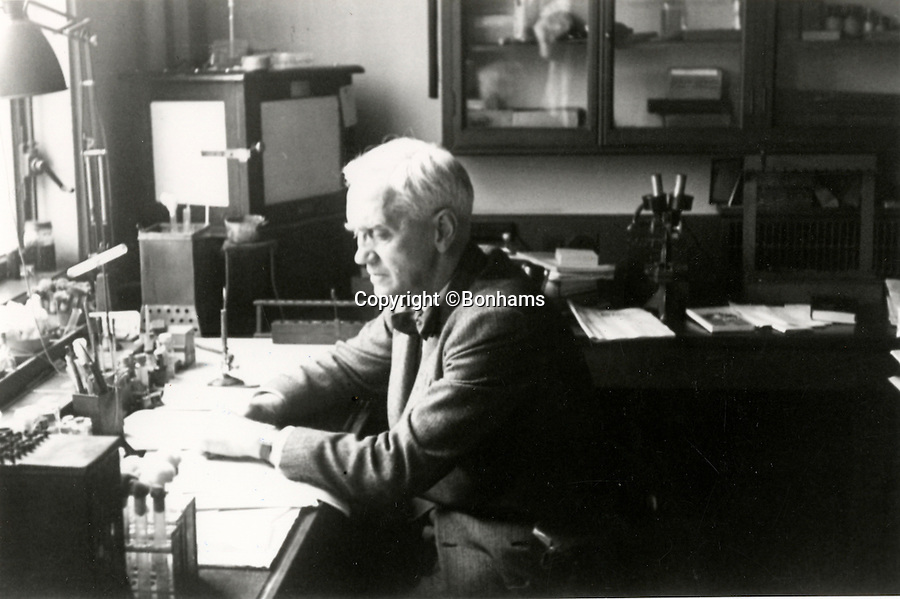 BNPS.co.uk (01202 558833)<br /> Pic: Bonhams/BNPS<br /> <br /> Fleming at work in his laboratory.<br /> <br /> Two samples of mould that legendary scientist Sir Alexander Fleming used to produce penicillin have sold for almost £25,000.<br /> <br /> Both specimens of the yellow-green Penicillium Notatum fungus are contained on a glass disc and date back to the 1930s when Fleming was developing his 1928 discovery of penicillin. <br /> <br /> The samples helped pave the way for the development of antibiotics which people first started to use in 1942 to treat infections which often would prove fatal.<br /> <br /> The treatment has gone on the save millions of lives across the world.