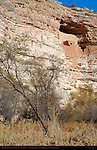 Montezuma Castle, Sinagua Cliff Dwelling, Montezuma Castle National Monument, Verde Valley, Arizona