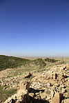 Israel, Shephelah, a view of Lahav Forest from Tel Halif site of biblical Rimmon