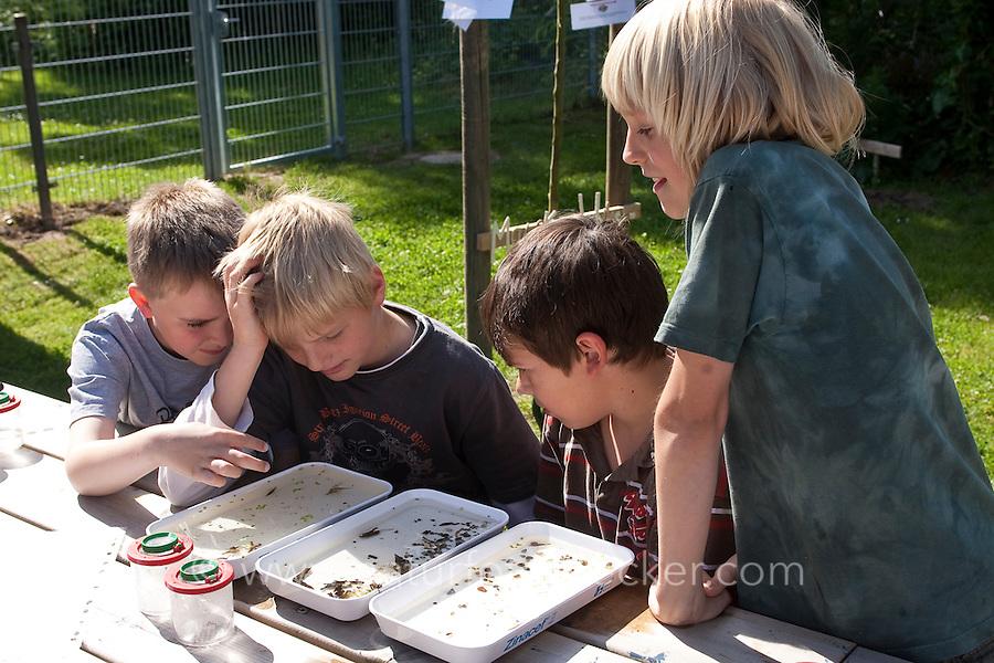 Grundschulklasse, Schulklasse im Schulgarten an ihrem selbst angelegtem Schulteich, Schul-Teich, Gartenteich, Garten-Teich, Kinder haben Tiere aus dem Teich gefangen und beobachten diese in weißen, flachen Schalen, Exkursion am Teich, Biologie-Unterricht im Freien, Grünes Klassenzimmer