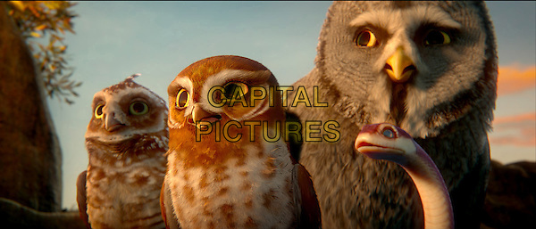 Digger, voiced by DAVID WENHAM, Gylfie, voiced by EMILY BARCLAY, Twilight, voiced by ANTHONY LaPAGLIA and Mrs. Plithiver, voiced by MIRIAM MARGOLYES.in Legend of the Guardians: The Owls of Ga'Hoole.*Filmstill - Editorial Use Only*.CAP/FB.Supplied by Capital Pictures.