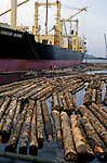 Logs being loaded onto a cargo ship in the Port of Everett, Washington USA