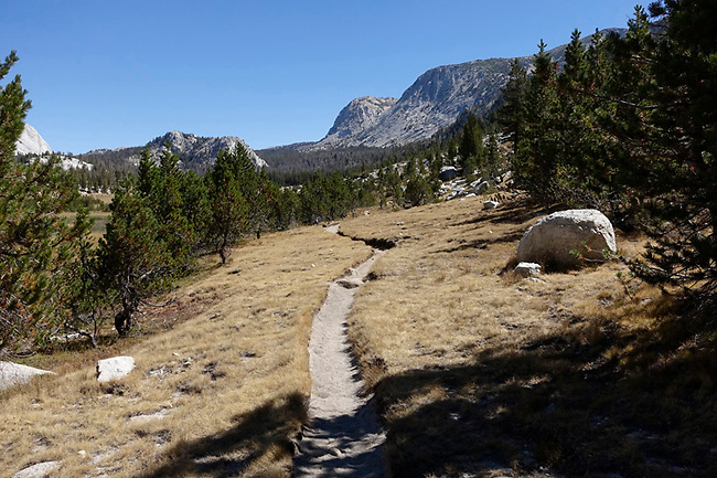 High Sierra Camp trail.  10,100 foot Vogelsang in distance.