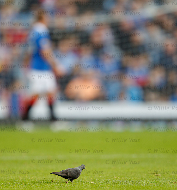 The Rangers pidgeon arrives to guide his team from a goal down to victory against Motherwell