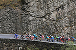 Jeremy Roy leads the pack near Kramsach during the first stage of 142 km of the cycling race Tour of the Alps (Former Giro del Trentino) between Kufstein and Innsbruck in Kufstein, on April 17, 2017. <br /> &copy; Pierre Teyssot