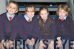 QUIZ: Participating in Chapter 23 of the Credit Unions Primary Schools Quiz in the North Campus of Tralee IT on Sunday afternoon were Sean Hanson, Lauren Fitzmaurice, Megan OConnor and Jane Dalton (of Ballyduff CNS)..