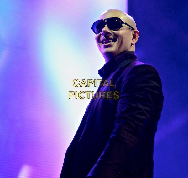 NEW YORK, NY - DECEMBER 26: Pitbull (Armando Christian Pérez) in concert at Barclays Center in New York City on December 26, 2013.