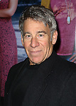 Stephen Schwartz attending the Broadway Opening Night Performance of 'IF/THEN' at the Richard Rodgers Theatre on March 30, 2014 in New York City.