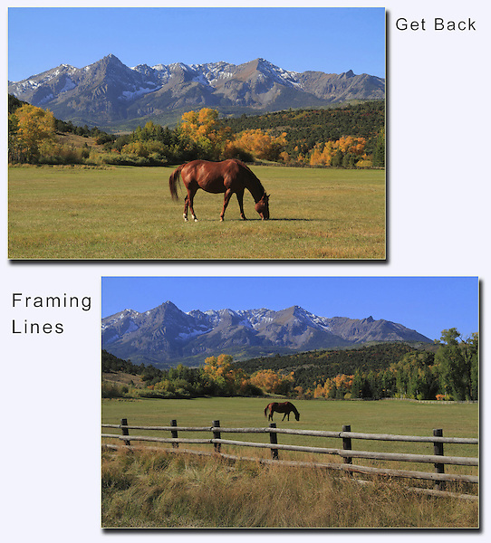 Look for interesting foreground subjects to advance your composition. Moving left or right will dramatically reposition the horse.<br />