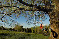 A young boy swings on a tire swing from a large tree in Charlotte, NC. Berewick master-planned community in southwest Mecklenburg County, Charlotte, NC. The property is developed by Pappas Properties.
