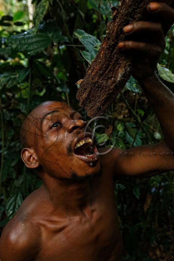 "In the forest, the honey-hunters have an extraordinary knowledge of plants, bark, animals. For thirst, the ""Modienbi"" liana is a reservoir of natural filtered water.///En forêt, les chasseurs ont une connaissance extraordinaire, des plantes, des écorces, des animaux. Pour boire, la liane «Modienbi» contient de l'eau filtrée naturelement."