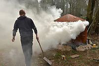 A charcoal kiln in action in an anchient deciduous woodland in southern England