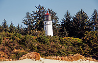 Late summer at Umpqua Lighthouse State Park, Oregon.