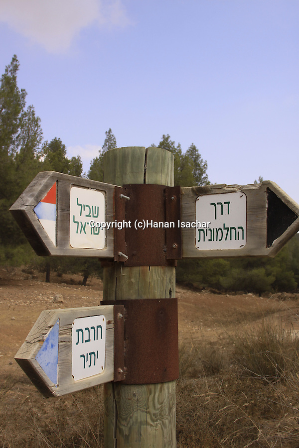 Israel, Southern Hebron Mountain, a road sign in Yatir forest