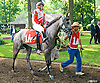 Jewell AA before The Delaware Park Arabian Oaks (grade II) at Delaware Park on 8/6/16