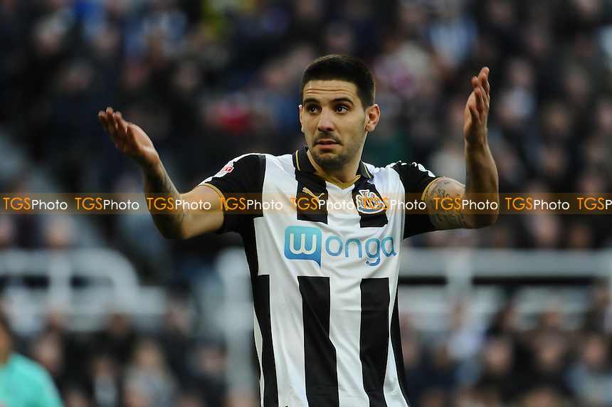 Aleksandar Mitrovic of Newcastle United tries to lift the crowd during Newcastle United vs Derby County, Sky Bet EFL Championship Football at St. James' Park on 4th February 2017