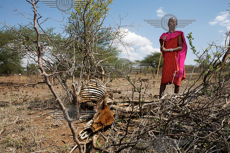 Maasai standing near the carcass of a dead cow in Kajiado district. Kenya is in the midst of a severe three-year drought, and in the absence of safe drinking water and food, pastoral tribes are extremely vulnerable to disease and famine.