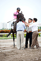 Corporate Jungle with jockey Javier Castellano up after winning the Appleton Stakes (G3T). Gulfstream Park Hallandale Beach Florida. 03-31-2012. Arron Haggart / Eclipse Sportswire