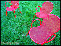 Three bright pink lawn chairs
