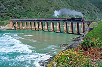 Suedafrika, Garden Route, Wilderness: Outeniqua Choo-Tjoe Schmalspurbahn auf Bruecke ueber den Kaaimans River | South Africa, Garden Route, Wilderness: Outeniqua Choo-Tjoe train crossing bridge across Kaaimans River