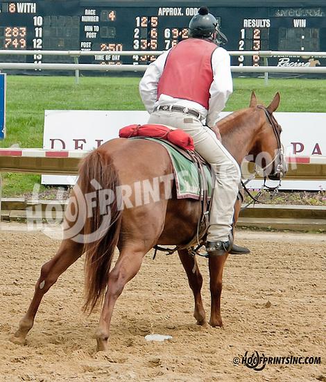 Lance (pay back) at Delaware Park on 7/20/13