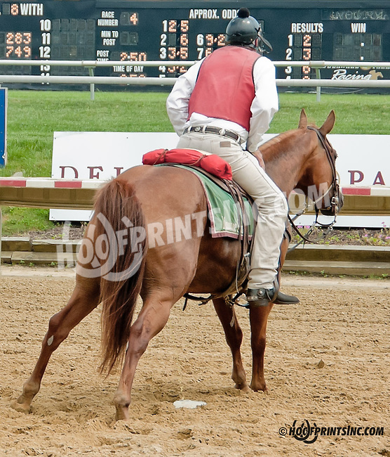Lance (pay back) at Delaware Park on 7/20/13