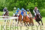 Abbeyfeale Races