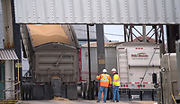 Workers watch as a truck load of grain is off loaded at Cargill Ag Horizons grain elevators.