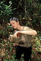 Biologist Capturing Lizard-cuckoo in mist nest; Cuba, Zapata Swamp