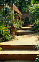 A stepped path lined with containers by Dina Prinsloo leads up through the garden towards the loggia