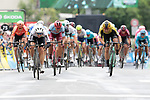 Edvald Boasson Hagen (NOR) Team Dimension Data leads Philippe Gilbert (BEL) Deceuninck-QuickStep and Wout Van Aert (BEL) Team Jumbo-Visma to the finish line of Stage 1 of the Criterium du Dauphine 2019, running 142km from Aurillac to Jussac, France. 9th June 2019<br /> Picture: Colin Flockton | Cyclefile<br /> All photos usage must carry mandatory copyright credit (© Cyclefile | Colin Flockton)
