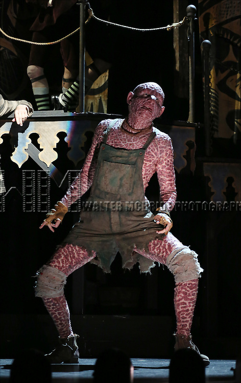 Don Richard as Reptile Man during the 'Side Show' Press Preview at the St James Theater on October 17, 2014 in New York City.