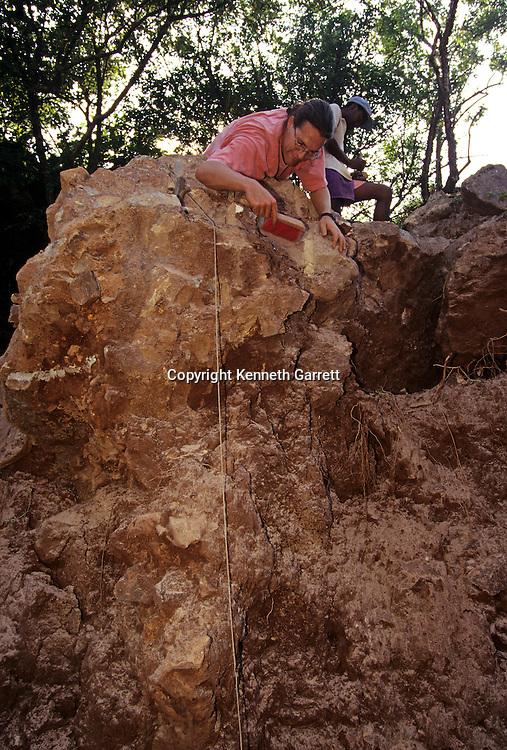 Drimolean Site, near Johannesburg, South Africa, 2 million year old hominid,.
