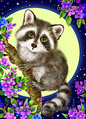 Kayomi, CUTE ANIMALS, LUSTIGE TIERE, ANIMALITOS DIVERTIDOS, paintings+++++,USKH305,#ac#, EVERYDAY ,#A#,realistic ,raccoon