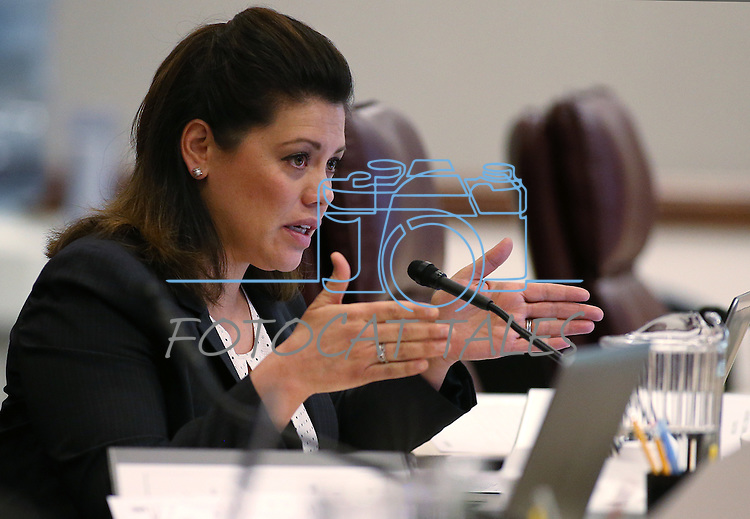 Nevada Assemblywoman Teresa Benitez-Thompson, D-Reno, works in committee at the Legislative Building in Carson City, Nev., on Tuesday, Feb. 10, 2015. <br /> Photo by Cathleen Allison