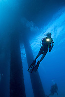 Diving the Fredericksted pier.Fredericksted, St. Croix.US Virgin Islands