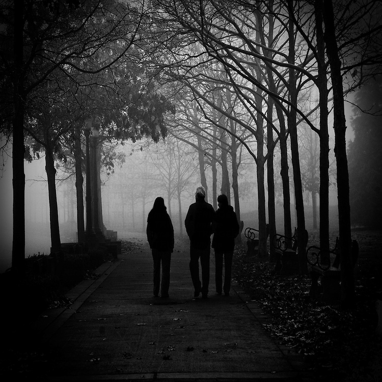 Three people walking in the fog, along a path lined with trees.