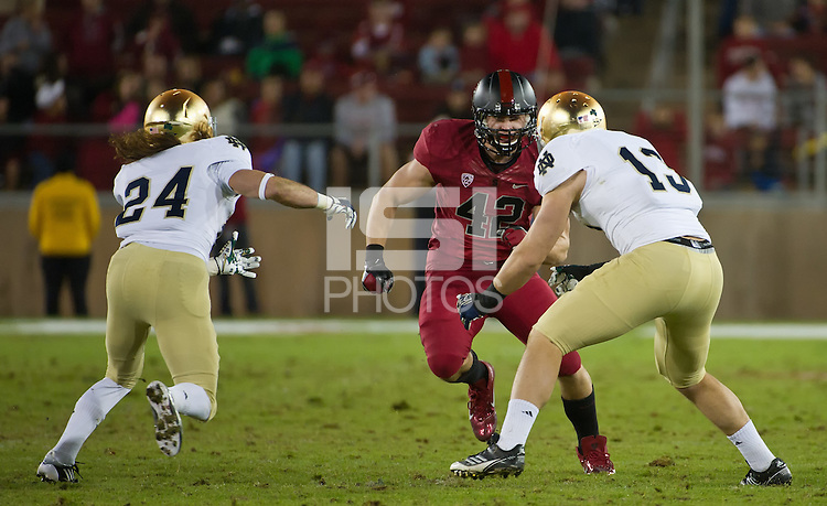 STANFORD, CA - November 26, 2011: Stanford linebacker Alex Debniak (42) competes against Notre Dame in Stanford Stadium at Stanford California. Final score Stanford wins 28-14.
