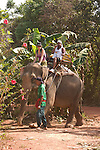 Tourists on elephant trek. Koh Lanta, Thailand