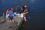 AT5CGD Family fishing for crabs on a wooden jetty River Deben Woodbridge Suffolk England
