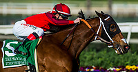 ARCADIA, CA - FEBRUARY 03: Itsinthepost #5, ridden by Tyler Baze wins the San Marcos Stakes at Santa Anita Park on February 3, 2018 in Arcadia, California. (Photo by Alex Evers/Eclipse Sportswire/Getty Images)