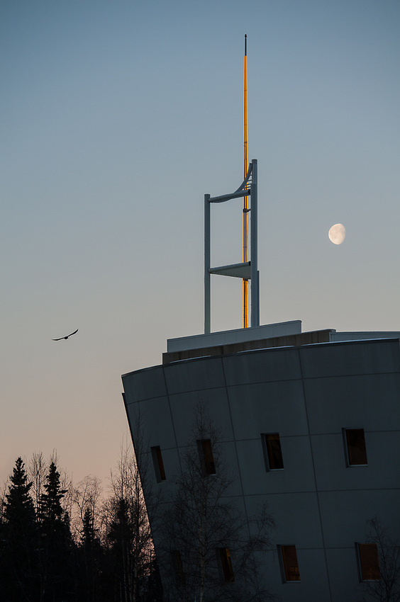 A raven and the moon over UAA's Consortium Library.