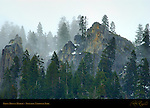 Dawn Mist in March, Yosemite Valley Rim, Yosemite National Park