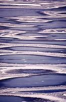 Tidal pools and sandbars.