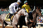 """October 05, 2019 : #10 Governeur Morris and jockey Javier Castellano in the 106th running of The Claiborne Breeders' Futurity Grade 1 $500,000 """"Win and You're In Breeders' Cup Juvenile Division"""" at Keeneland Racecourse in Lexington, KY on October 04, 2019.  Candice Chavez/ESW/CSM"""