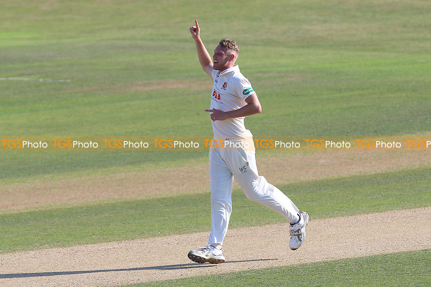 Jamie Porter of Essex celebrates taking the wicket of Craig Meschede during Essex CCC vs Glamorgan CCC, Specsavers County Championship Division 2 Cricket at the Essex County Ground on 14th September 2016