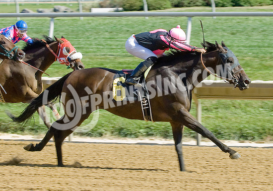 Debit Card winning at Delaware Park 9/15/12