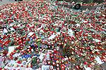 Am heutigen Sonntag (15.11.2009) nahmen die Fans und Freunde des am 10.11.2009 verstorbenen Nationaltorwartes Robert Enke ( Hannover 96 ) Abschied. In der groessten Trauerfeier nach Adenauer kamen rund 100.000 Tr&auml;uergaeste zur AWD Arena. Zu den VIP z&auml;hlten u.a. Altkanzler Gerhard Schroeder, Bundestrainer Joachim Loew und die aktuelle DFB Nationalmannschaft, sowie Vertreter der einzelnen Bundesligamannschaften und ehemalige Vereine, in denen er gespielt hat. Der Sarg wurde im Mittelkreis des Stadions aufgebahrt. Trauerreden hielten u.a. MIniterpr&auml;sident Christian Wulff, DFB Pr&auml;sident Theo Zwanziger , Han. Pr&auml;sident Martin Kind <br /> <br /> Foto: Teresa Enke nimmt kurz vor 10 Abschied von ihrem Mann, der am MIttelkreis aufgebahrt wurde. <br /> <br /> Foto: &copy; nph ( nordphoto )