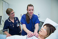 Birth Centre staff training using SimMom an advanced full body birthing simulator