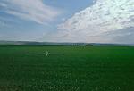 Farming, water, irrigation, farm worker irrigating, Columbia Basin, Eastern Washington, Washington State, Pacific Northwest, North America, United States,